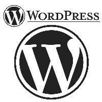Professional, Affordable, Mobile-Friendly, Responsive, WordPress Website Designers, Website Developers, and Website Re-designers in Darwin NT.